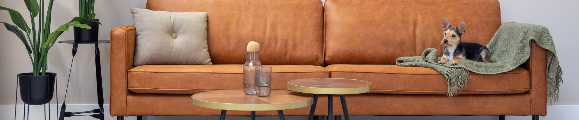 Livingstone Design fauteuils