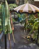 HKliving Beach parasol
