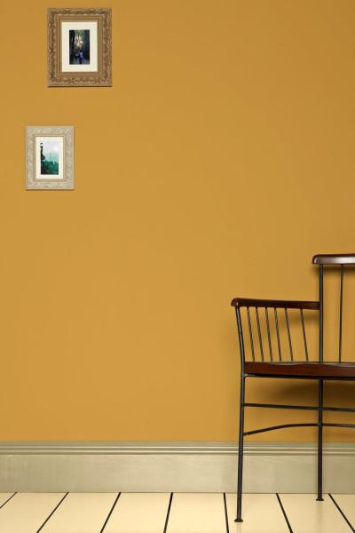 Farrow & Ball Krijtverf Sudbury Yellow (51)
