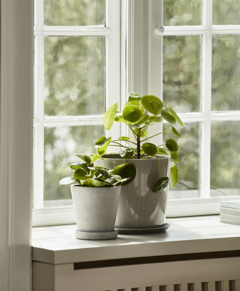 Hay Botanical Family bloempot set XL