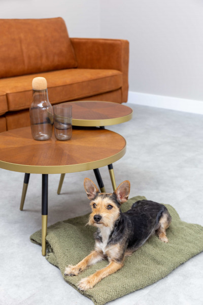 Livingstone Design Huntly salontafel