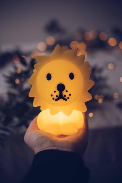 Mr Maria Bundle Of Light Leeuw nachtlamp