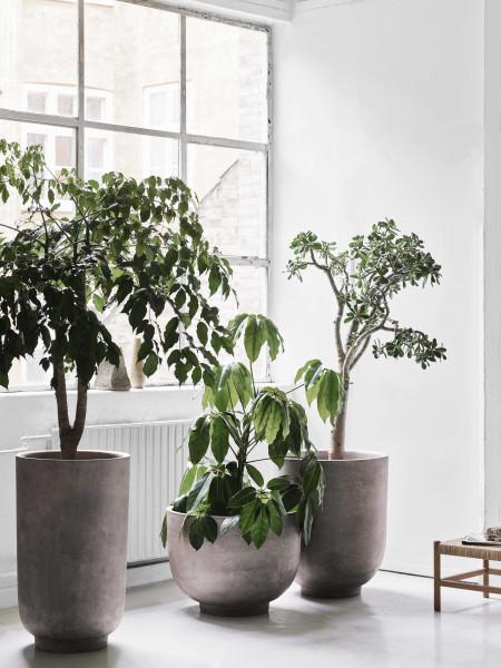 &tradition Planter SC44 bloempot 65