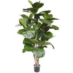 Designplants Lyrata Deluxe kunstplant 170