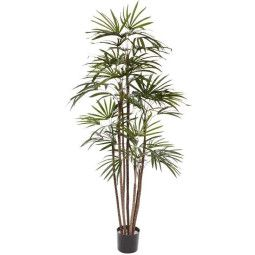 Designplants Raphis Palm kunstplant 170