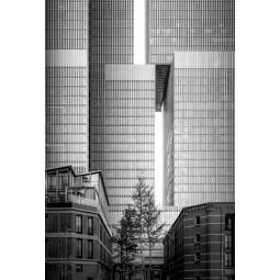 Get Art Rotterdam pakhuizen kunstfotografie