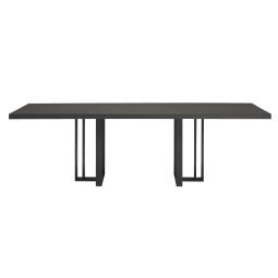 QLiv T2 tafel 220x100