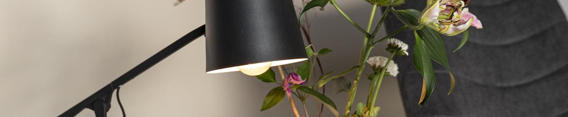 Zuiver bureaulampen